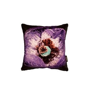 Poppy-Cushion_Lindsay-Taylor_Treniq_0