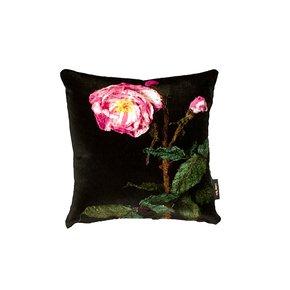 Rosa-Mundi-Cushion_Lindsay-Taylor_Treniq_0