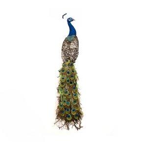 Peacock_Lindsay-Taylor_Treniq_0