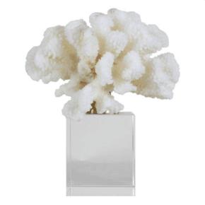 Coral-Shard_5mm-Design_Treniq_0