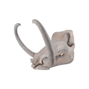 Mammoth-Skull_5mm-Design_Treniq_0