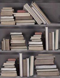 Vintage bookshelf wallpaper mineheart treniq 1 1497553655698