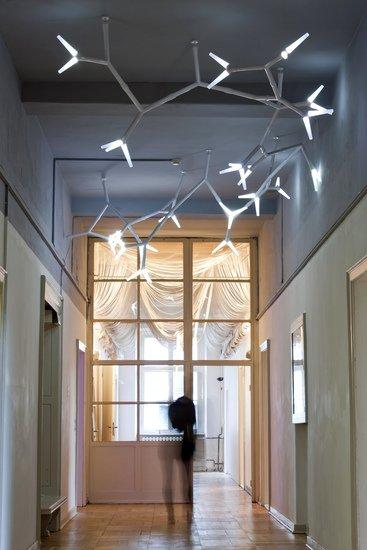 Sparks ceiling system quasar treniq 1 1500905609698