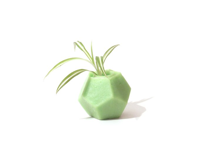 for your favourite plant hr design studio   behind the obvious treniq 1 1505606573019