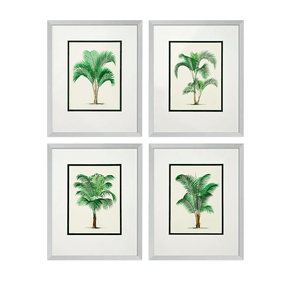 Eichholtz-Palms-Print-(Set-Of-4)_Eichholtz-By-Oroa_Treniq_0