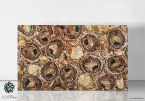 Petrified-Wood-Brown_Maer-Charme_Treniq_0