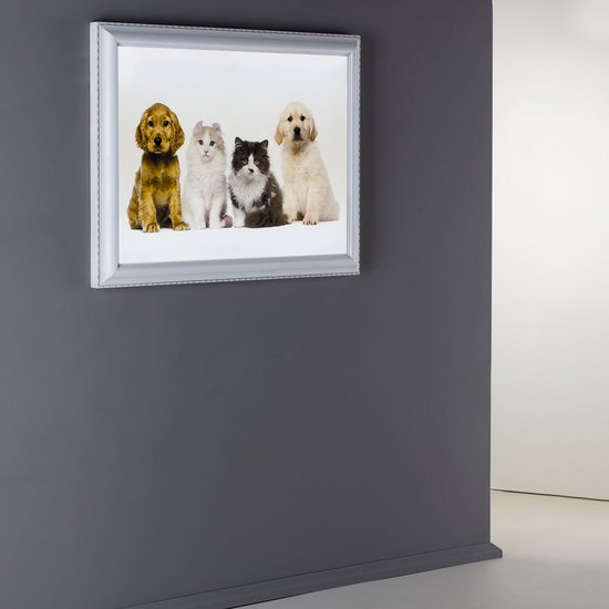 Phf 01.210p framed backlit panel chiara ferrari treniq 1 1513263823219
