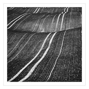 Corduroy-Fields_Beata-Podwysocka-Fine-Art-Photography_Treniq_0