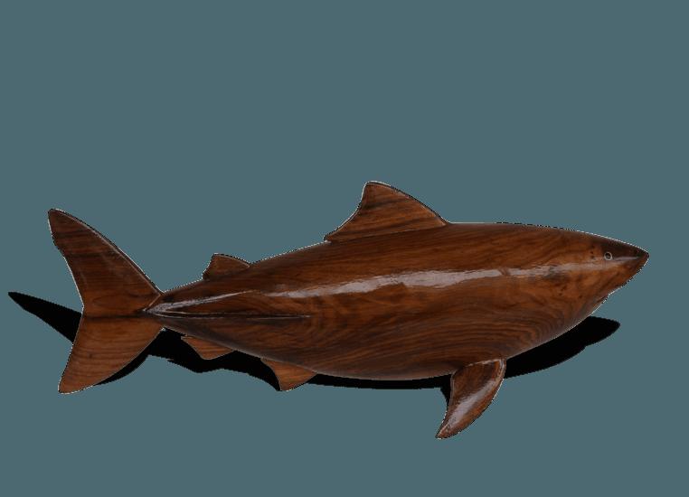 Bull shark avana africa treniq 1 1516699634745