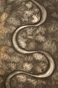 Ghost-Snake-In-Winter-Leaves-_Metall-Fx_Treniq_0