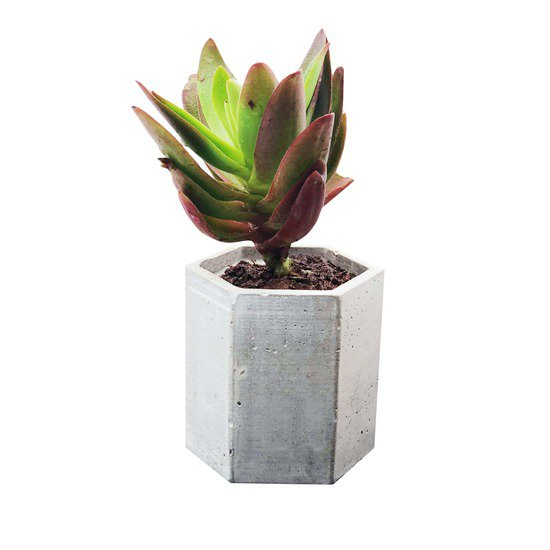 Hexagon planter karan desai design treniq 1 1519452153997