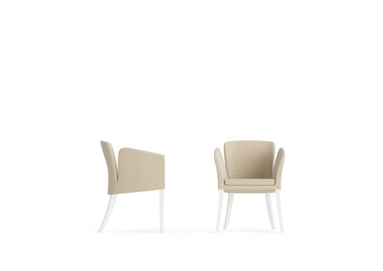 Elegance chair  aparattus treniq 1 1519898594784