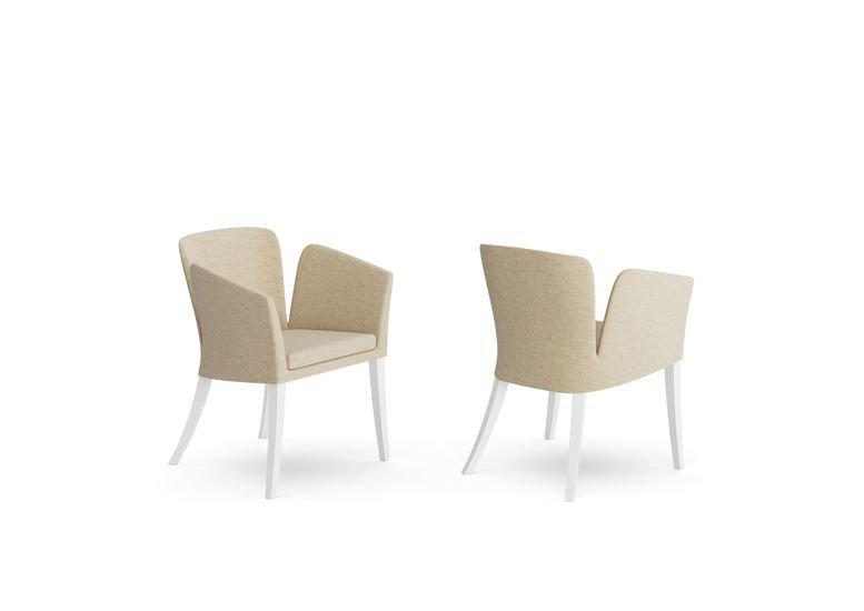Elegance chair  aparattus treniq 1 1519898600992