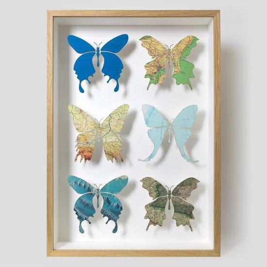 Six butterfly artwork n%c2%ba5 imagesurgery treniq 1 1525945872119