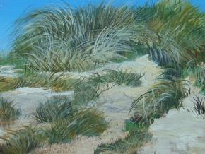 Save-Our-Sands_Lindsey-Keates-Environmental-Artist-_Treniq_0