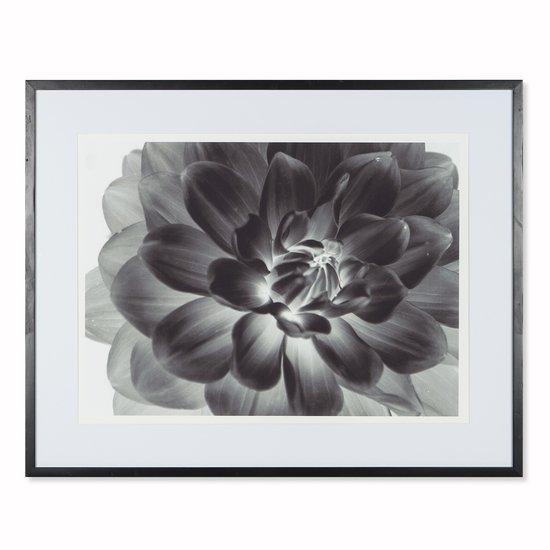 Black flower  sonder living treniq 1 1527684398794