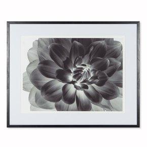 Black-Flower-_Sonder-Living_Treniq_0