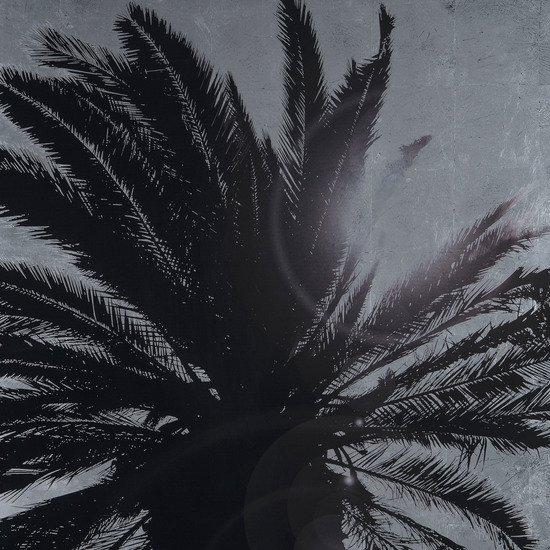 Silver leaf palm tree b  sonder living treniq 1 1527739631078