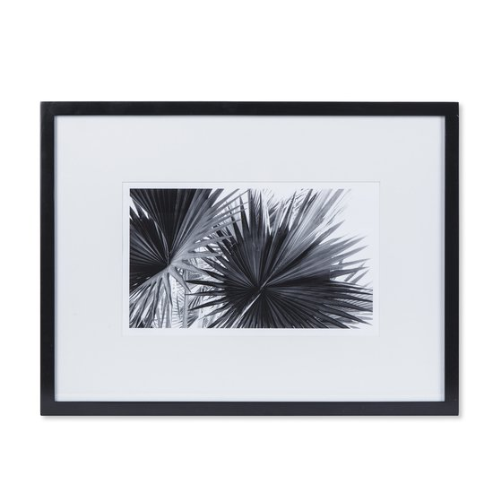 Black   white palm leaves b  sonder living treniq 1 1527739702718
