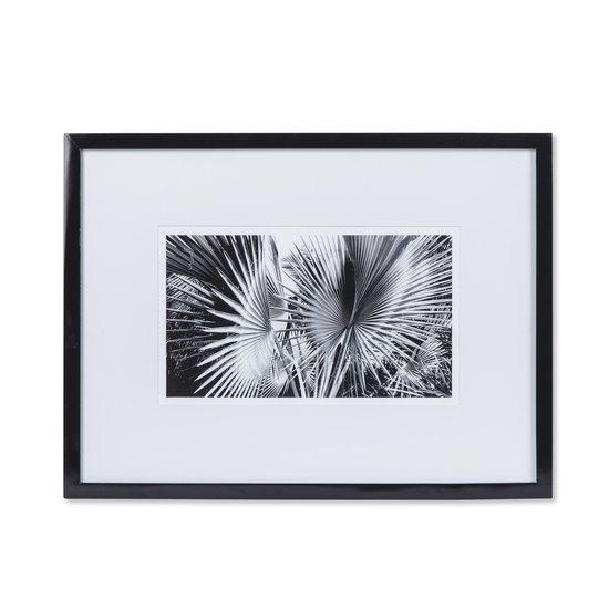 Black   white palm leaves c  sonder living treniq 1 1527739800096
