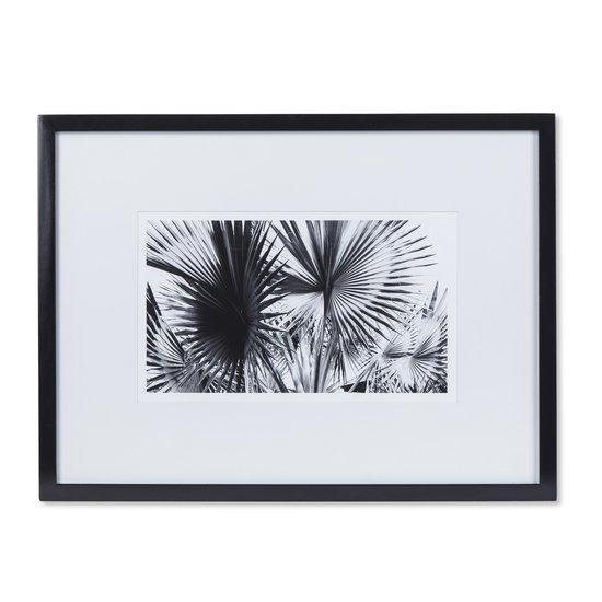 Black   white palm leaves a  sonder living treniq 1 1527739864047