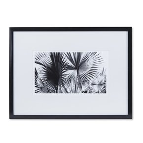 Black-&-White-Palm-Leaves-A-_Sonder-Living_Treniq_0