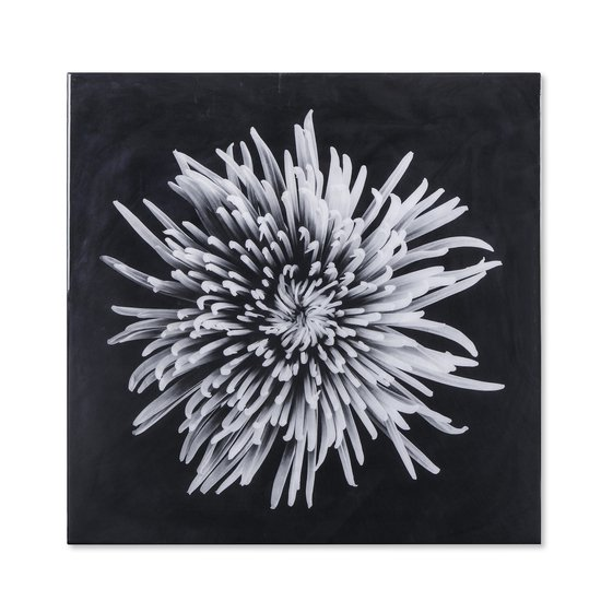Black   white flower epoxy a  sonder living treniq 1 1527740109423