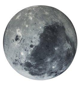 Moon-Rugs_Circu_Treniq_0